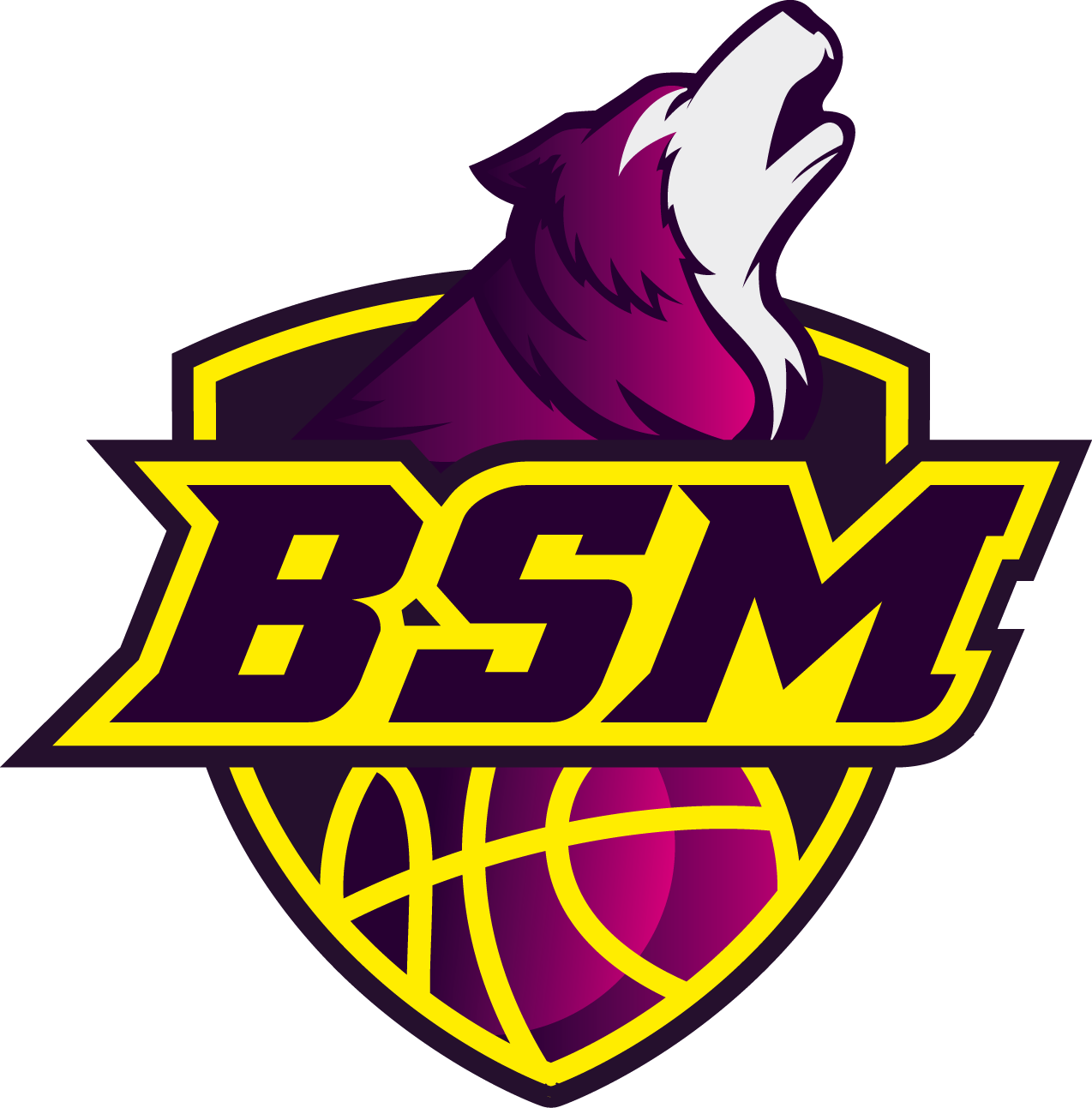 BSM Basket Saint Macaire